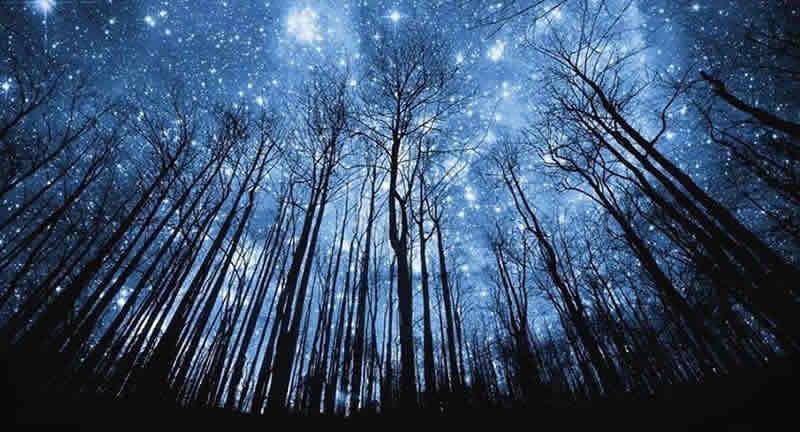 Terraformazione e Nuova Genesi Giardino Eden