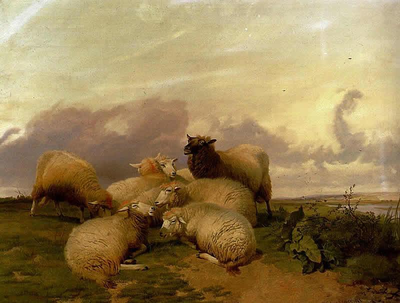 Ateismo e Liberta Thomas Sidney Cooper Pecore nei Prati di Canterbury Circolo dei Tignosi